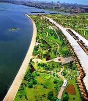 赤坎金沙湾观海长廊的热带风光(局部)