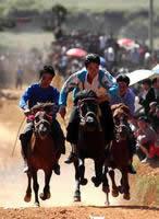 水族端节的赛马