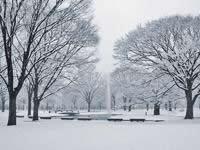 哈尔滨雪景
