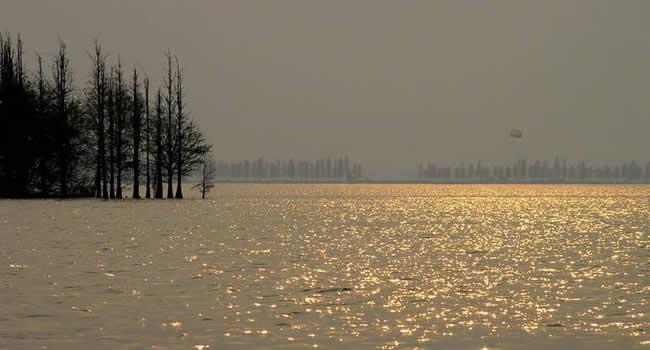 风景图片 东湖/屈原名平(公元前340/前278年),战国时期秭归人,是一位杰出...