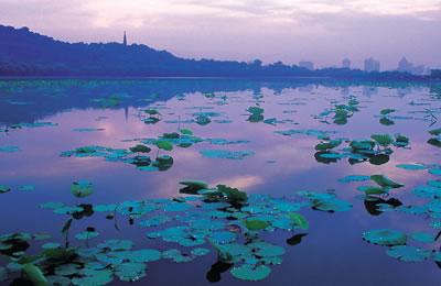 西湖,是一首诗,一幅天然图画,一个美丽动人的故事,不论是多年居住在